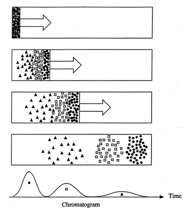 File:Chromatography.png