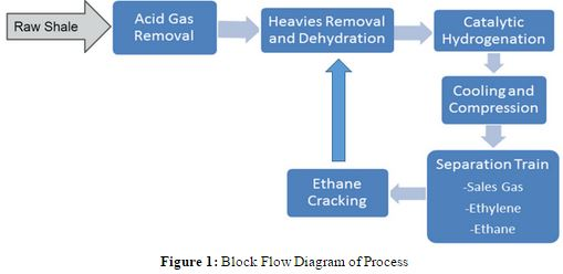 Shale Gas To Ethylene  G1