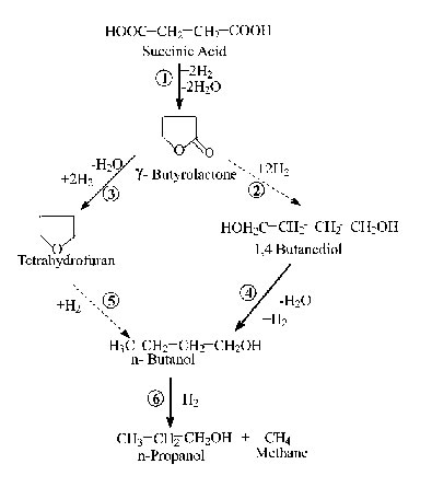 Reaction Mechanism.jpg